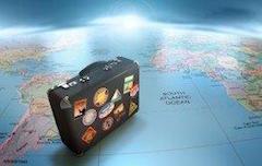 Expatriate suitcase